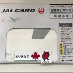 JALカードの種類による審査難易度の違い。審査の流れとカード到着までの期間。